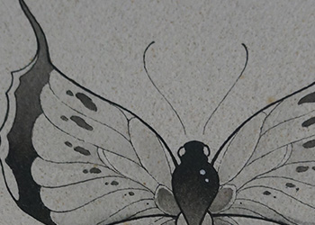 butterfly inkwash